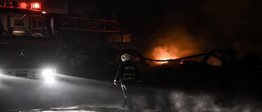 Ολονύχτια μάχη με τις φλόγες στη Σίνδο