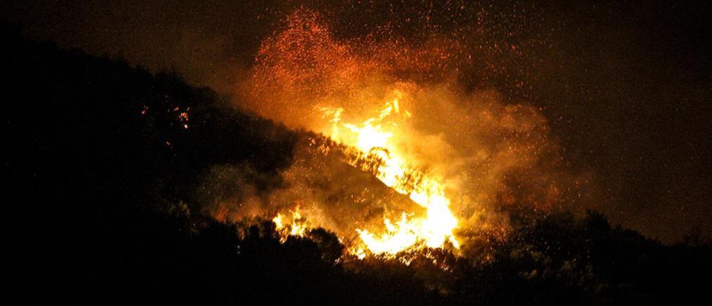 Ολονύχτια μάχη με τις φλόγες σε τέσσερα μέτωπα φωτιάς