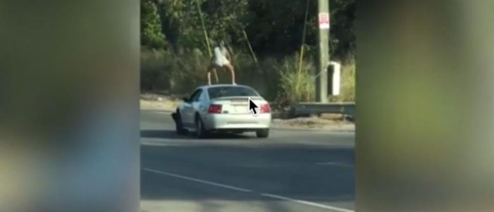 Νεαρή κάνει twerking σε οροφή αυτοκινήτου... εν κινήσει! (βίντεο)