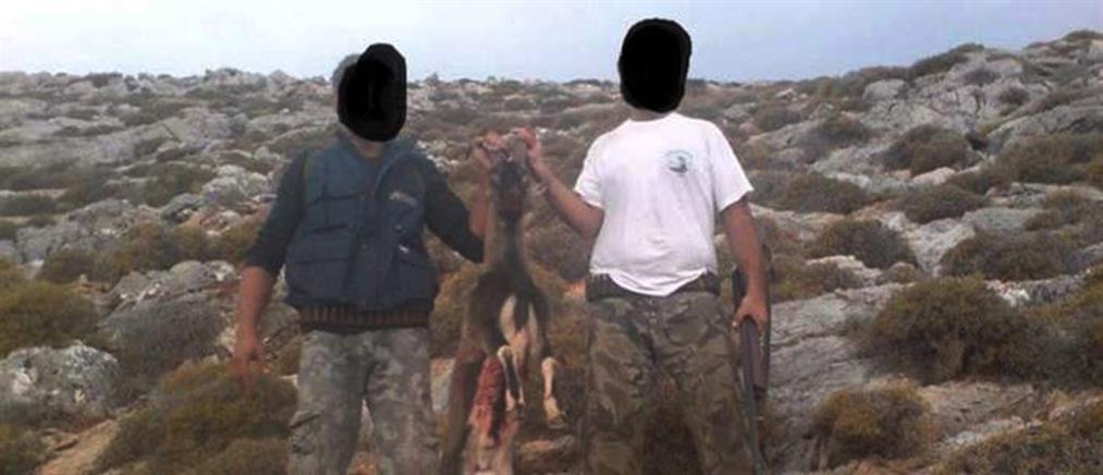 Σκότωσαν κρι-κρι και καμαρώνουν με φωτογραφίες-σοκ στο internet (φωτο)
