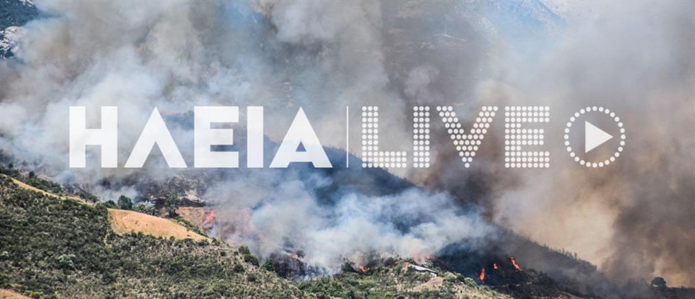 Φωτιά στην Ωλένη