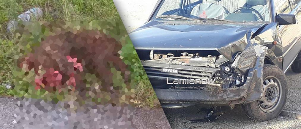 Ανυποψίαστη οδηγός έπεσε πάνω σε σκοτωμένα αγριογούρουνα (φωτο)