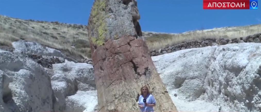 Εναλλακτικός τουρισμός στη Λέσβο (βίντεο)