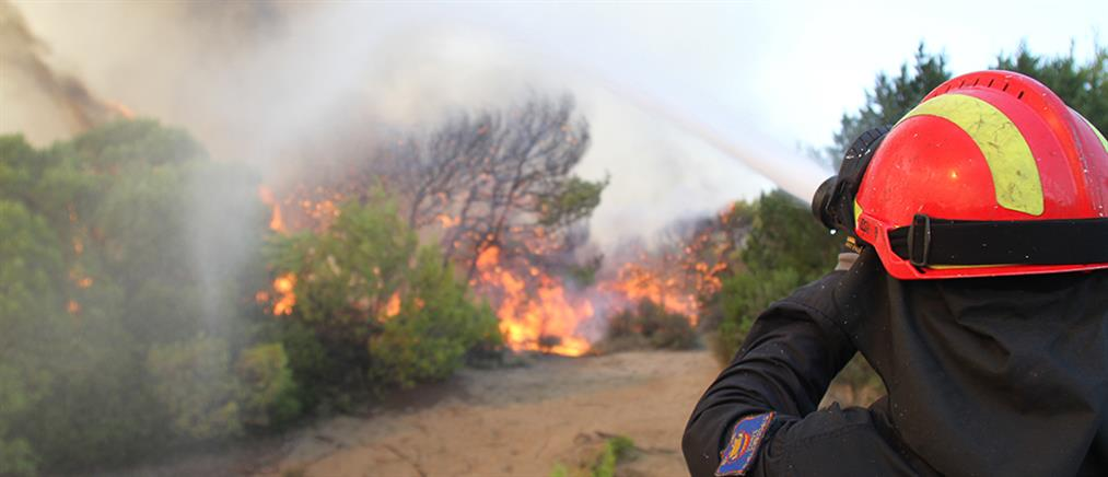 Πυρκαγιά απειλεί το προστατευόμενο δάσος της Στροφυλιάς