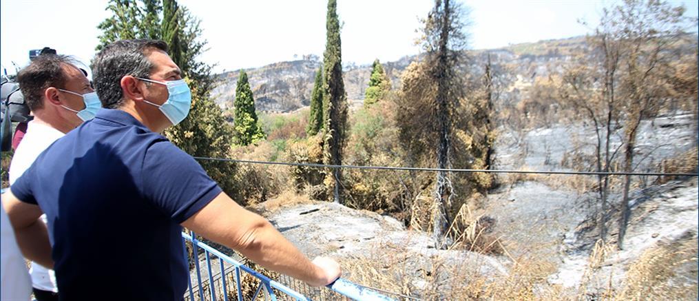 Τσίπρας από Ηλεία: Ο κ. Μητσοτάκης δεν έχει αντιληφθεί το μέγεθος της καταστροφής