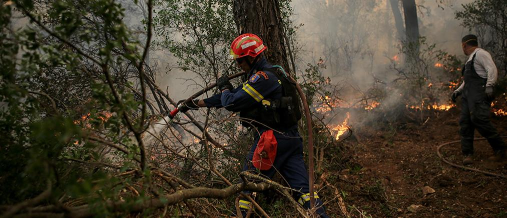 Κι άλλη φωτιά ξέσπασε στην Εύβοια!