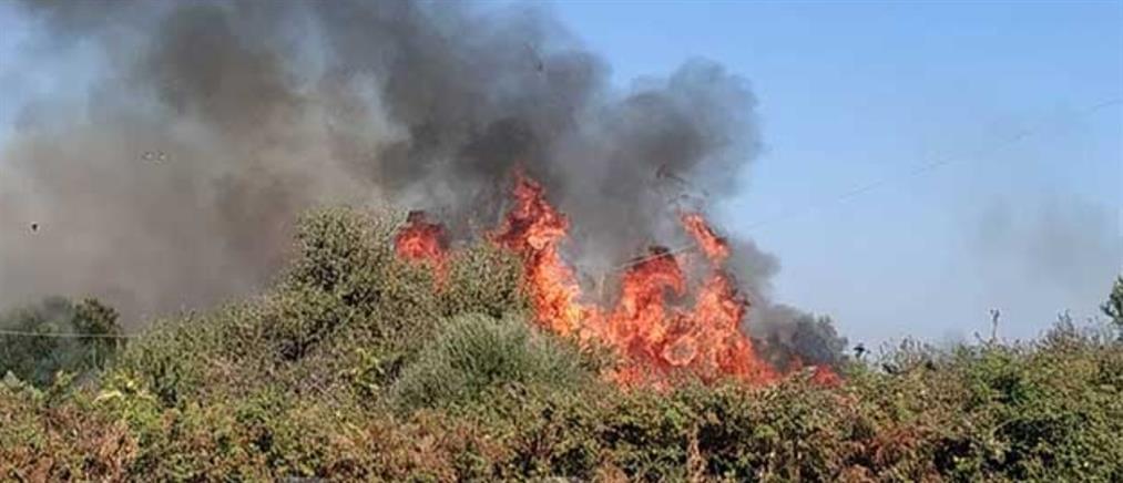 Πυρκαγιά στην Νικόπολη (εικόνες)