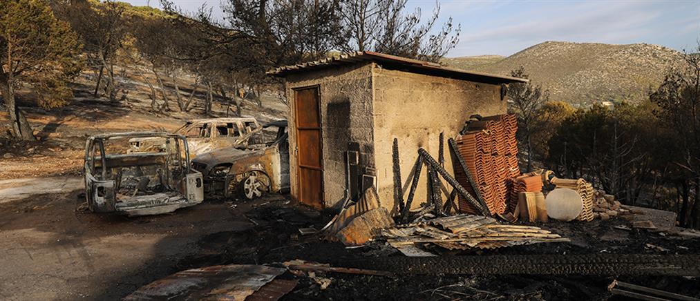 Φωτιά στη Νέα Μάκρη: Κάηκαν σπίτια - Σε ύφεση το πύρινο μέτωπο (βίντεο)