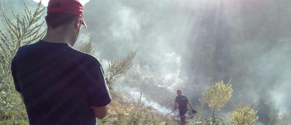 Πυρκαγιά σε ορεινή περιοχή της Ευρυτανίας (εικόνες)