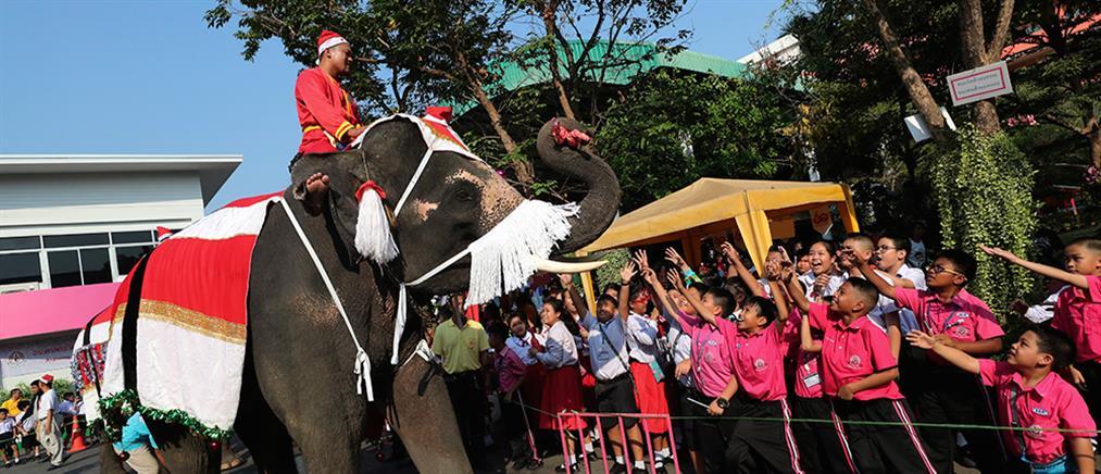 """Ελέφαντες - """"Αγιοβασίληδες""""  μοιράζουν χριστουγεννιάτικα δώρα σε μαθητές"""