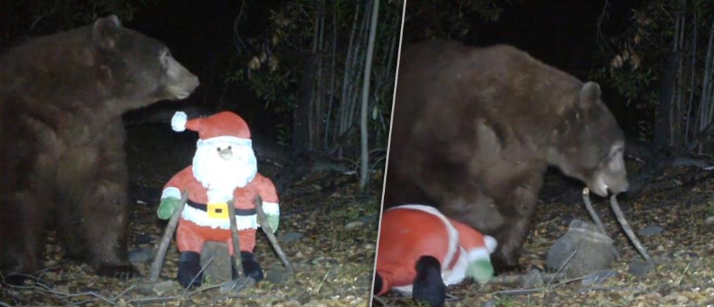 Επίθεση αρκούδας στον Αϊ-Βασίλη