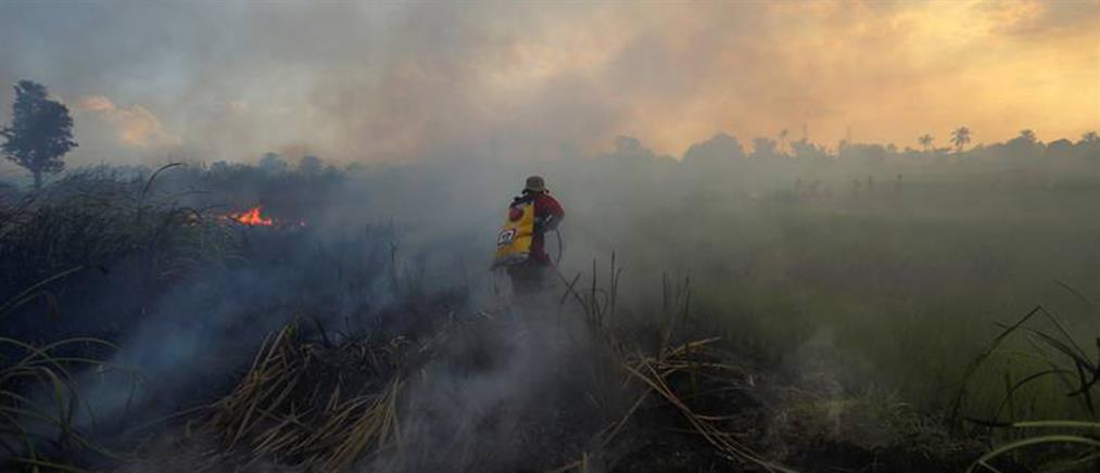 Απίστευτο: εθελοντές πυροσβέστες έβαζαν φωτιές για... 10 ευρώ την ώρα