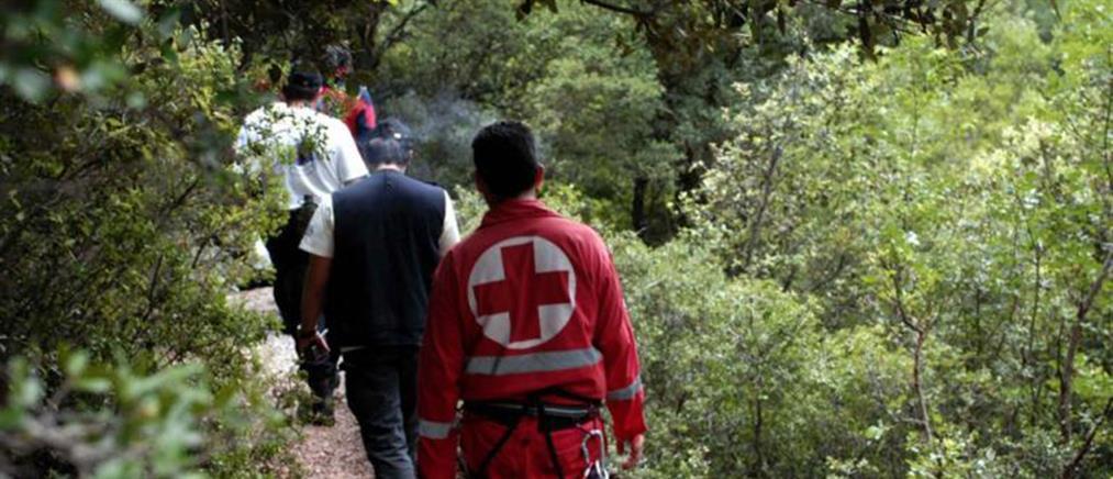 Εξαφανίστηκε 12χρονος στα Καλάβρυτα – Τεράστια επιχείρηση για τον εντοπισμό του