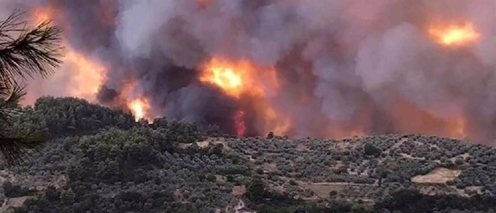 Φωτιές - Κικίλιας: Σε μέγιστη επιχειρησιακή ετοιμότητα το ΕΣΥ