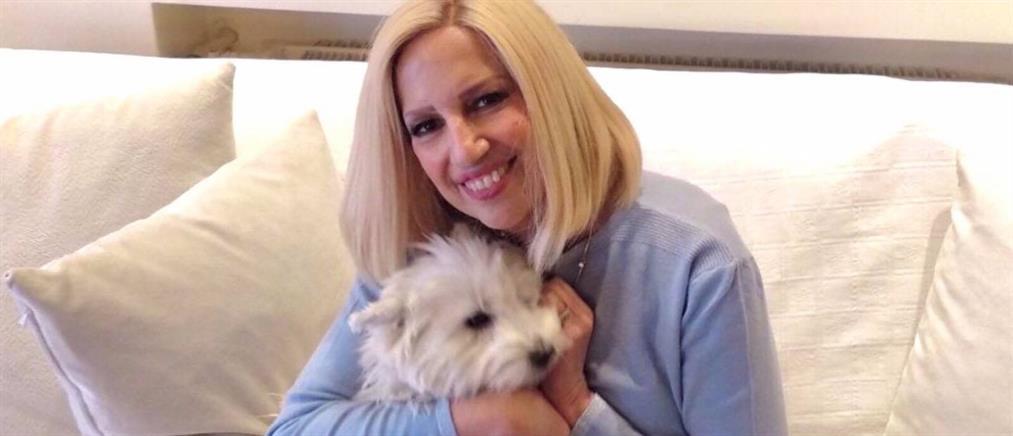 Λιάνης: η Γεννηματά λιποθυμούσε στις σκάλες, αλλά… (βίντεο)