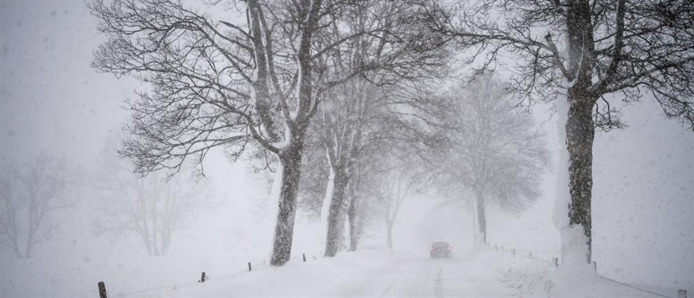 Στο έλεος του χιονιά πολλές χώρες της Ευρώπης (βίντεο)