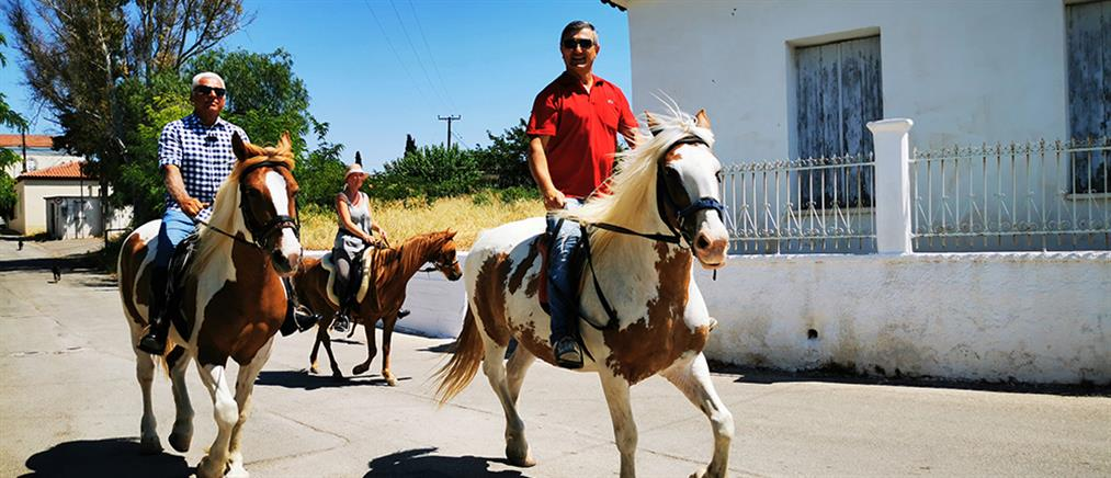 Πήγαν στην κάλπη με... άλογα (εικόνες)