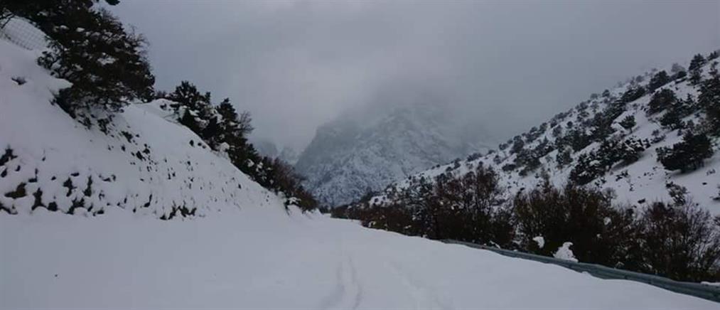 Σημαντικά μειωμένη φέτος η χιονοκάλυψη στην Ελλάδα