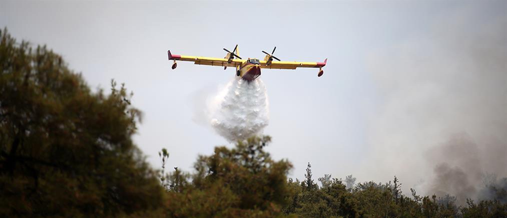 Αχαΐα: Φωτιά στη Δροσιά Ερυμάνθου