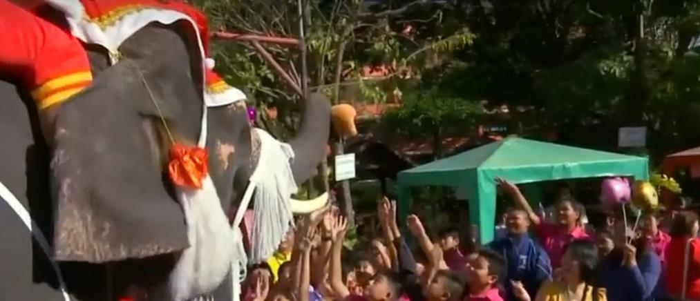 Άγιοι Βασίληδες μοίρασαν δώρα με ελέφαντες (βίντεο)