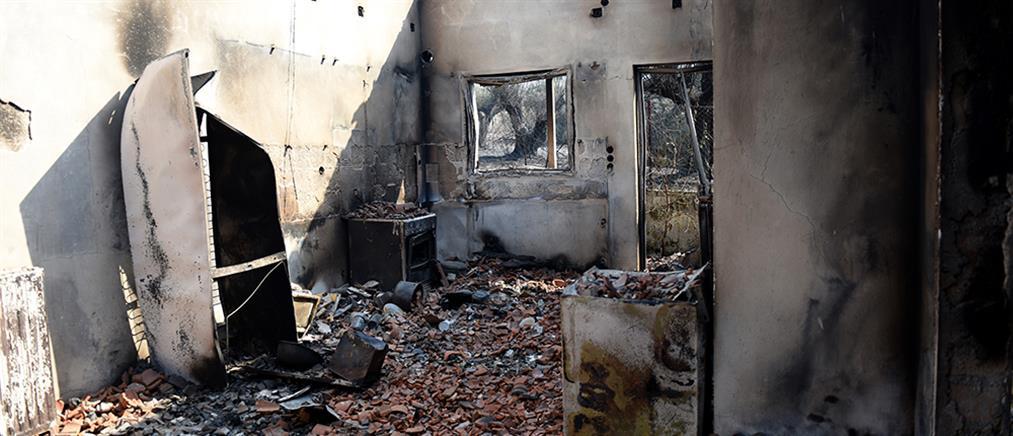 Φωτιά στην Αχαΐα: Αυτοψία και πρώτη αποτίμηση για αποζημιώσεις
