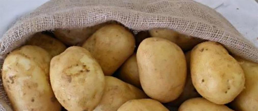 Πατάτα: τα άγνωστα οφέλη της, ακόμη και στην δίαιτα
