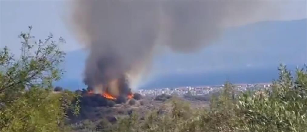 Φωτιά στην Αίγινα (βίντεο)