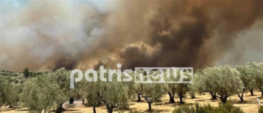 Φωτιά στην Ηλεία: Νέο πύρινο μέτωπο