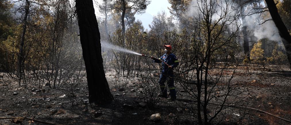 Χρυσοχοΐδης: Η ενημέρωση για τις φωτιές και οι εξηγήσεις για τo ρωσικό Beriev (βίντεο)