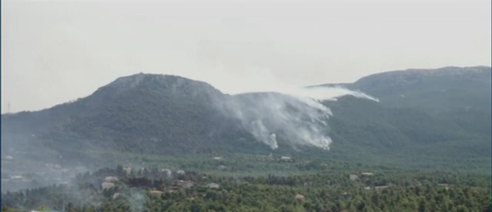 Φωτιά στην Αττική - Πάρνηθα: Νέο μέτωπο ανάμεσα σε Θρακομακεδόνες και Κρυονέρι