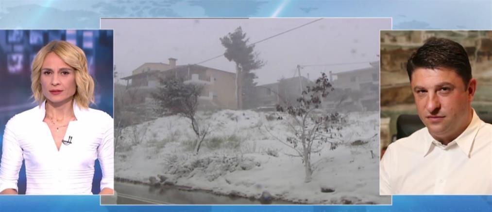 """Χαρδαλιάς στον ΑΝΤ1: σε ετοιμότητα ο κρατικός μηχανισμός για τον """"Ηφαιστίωνα"""" (βίντεο)"""