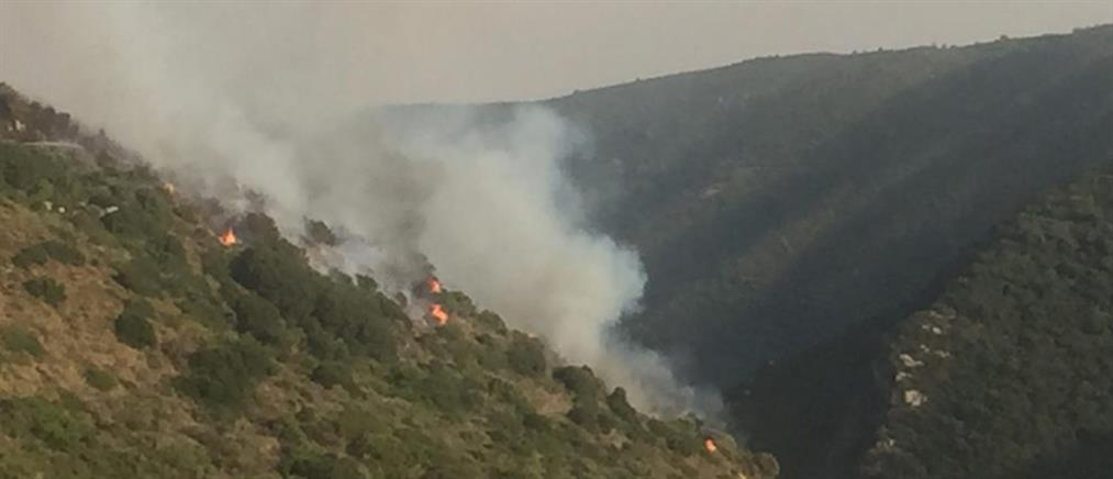 """Φωτιά στη Μεσσηνία: συνεχίζεται η """"μάχη"""" στο Βασιλίτσι"""