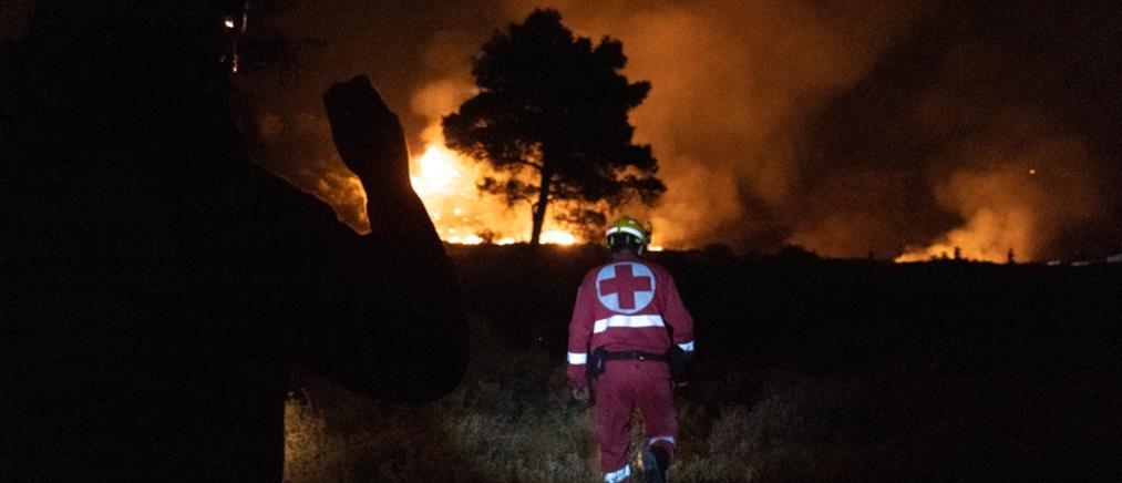 Φωτιές: ο Κάρολος έκανε δωρεά για τους πυρόπληκτους στην Ελλάδα