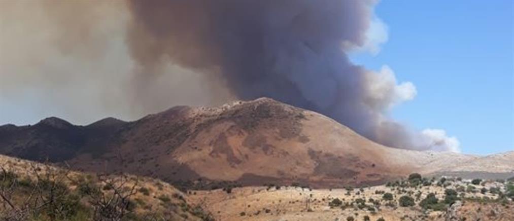 Φωτιά στην Μάνη: Αναζωπυρώσεις και διάσπαρτες εστίες