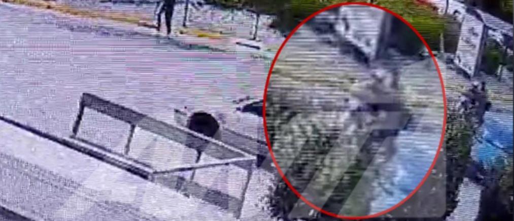 Δολοφονία Καραϊβάζ: Αυτοί είναι οι δολοφόνοι (εικόνες)
