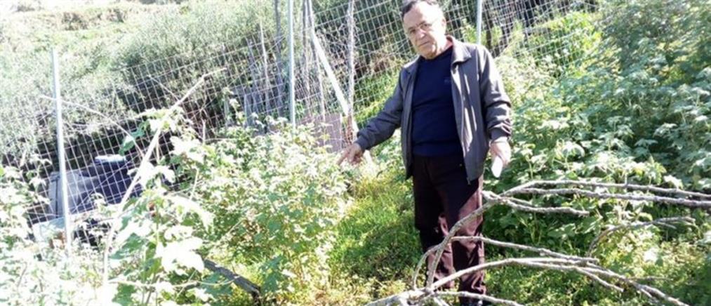 Βρήκε βόμβα του Β' Παγκοσμίου Πολέμου στο χωράφι του