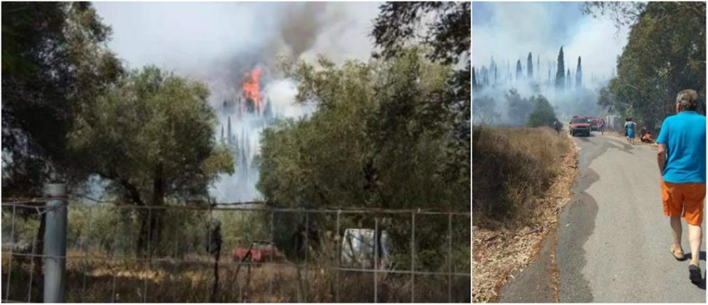 Φωτιά στην Κέρκυρα (εικόνες)