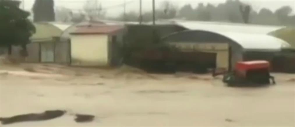 """Κακοκαιρία: """"Ποδαρικό"""" με πλημμύρες (βίντεο)"""