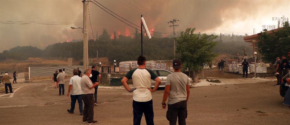 Πατούλης - Φωτιά στα Βίλια: εντολή εκκένωσης δίνει μόνο ο Αρχηγός της Πυροσβεστικής