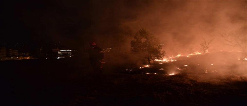 Φωτιά στο Άλσος Βεϊκου