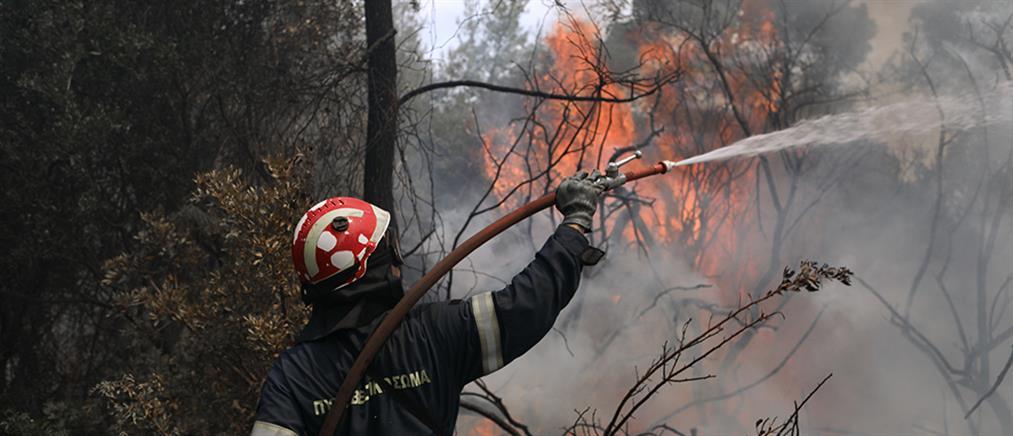 Ηράκλειο: Φωτιά στο Τεφέλι