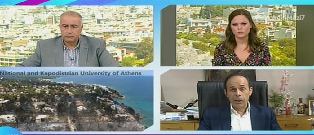 Δήμαρχος Ραφήνας στον ΑΝΤ1: Περιφερειακή σύμβουλος πλαστογράφησε έγγραφα (βίντεο)