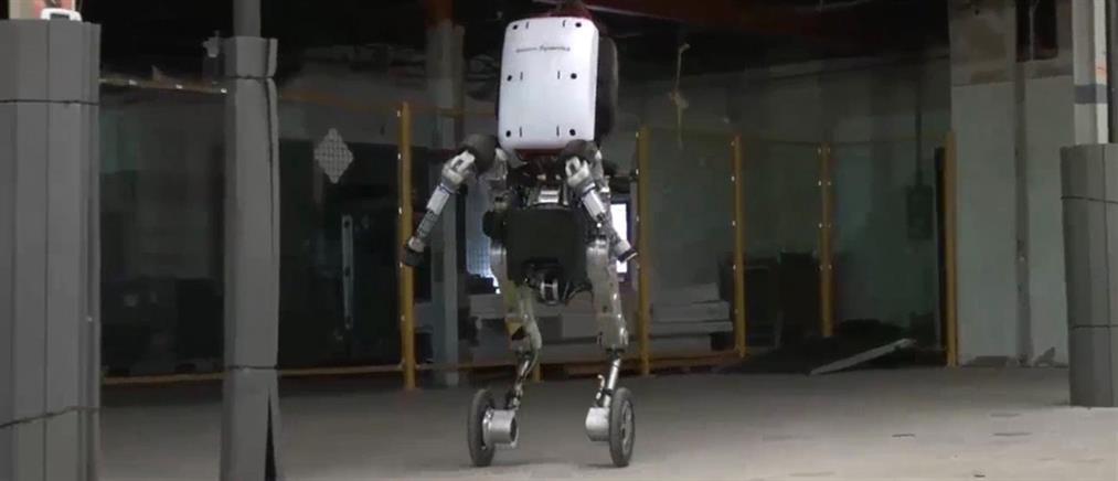 Ρομπότ… καθαριστής και ελαιοχρωματιστής (φωτό)