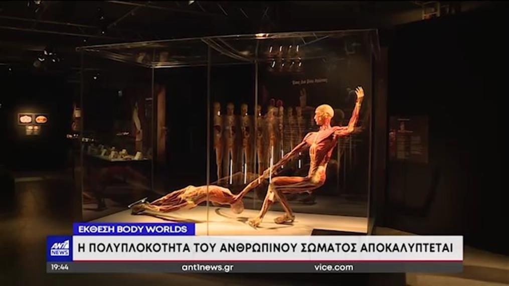 Έκθεση Body Worlds: Η πολυπλοκότητα του ανθρώπινου σώματος