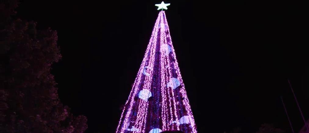 Ένα χριστουγεννιάτικο δέντρο στο Ρεκόρ Γκίνες