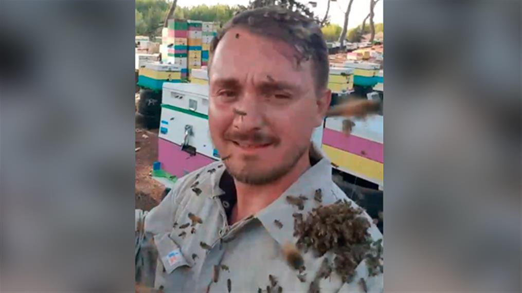 Ο ατρόμητος μελισσοκόμος από την Ηλεία