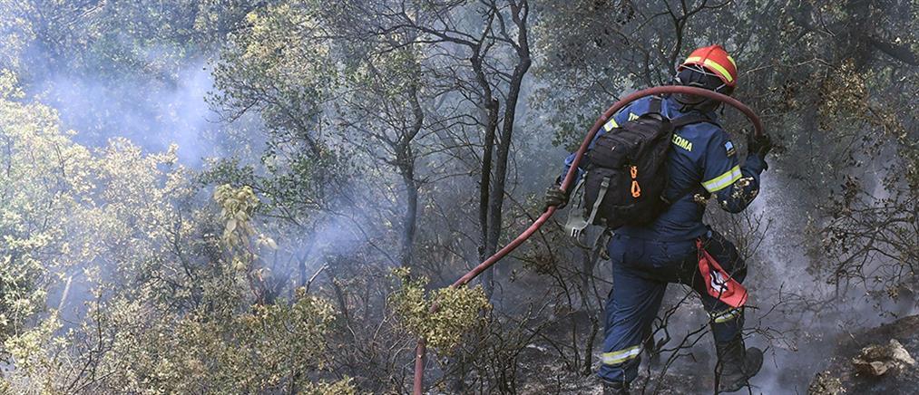 Φωτιά στα Γεράνεια Όρη: διάσπαρτες εστίες για πέμπτη μέρα (εικόνες)