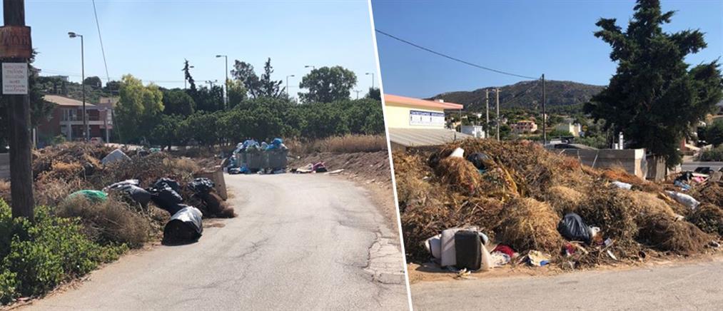 """Πόρτο Ράφτη: καταγγελία για """"εμπρηστικό"""" συνδυασμό από σκουπίδια και ξερά χόρτα (εικόνες)"""