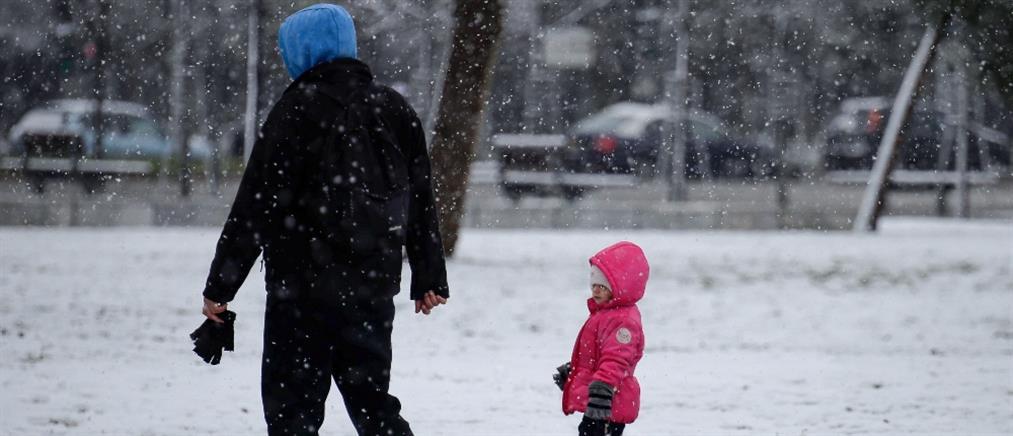 """""""Λέανδρος"""": Κλειστά σχολεία την Τετάρτη, λόγω παγετού"""