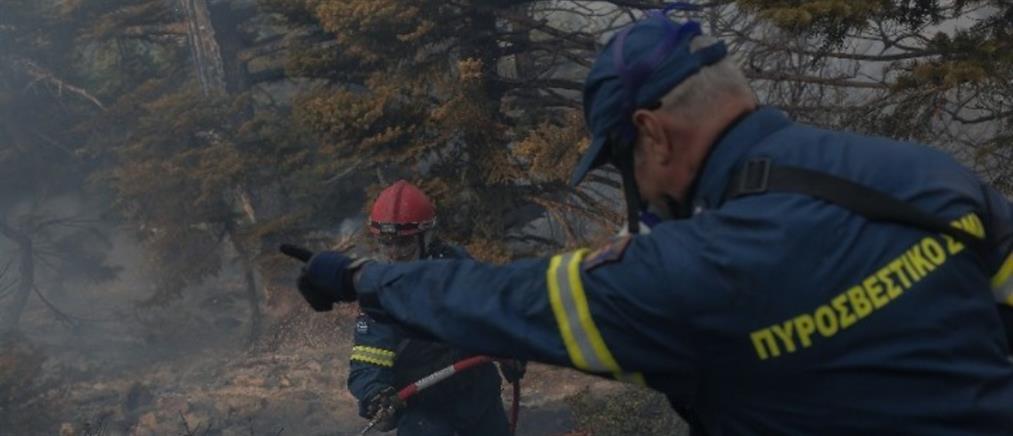 Φωτιά στην ανατολική Μάνη: Επιφυλακή για τις αναζωπυρώσεις
